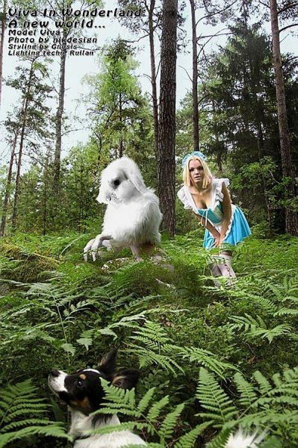 Алиса в стране чудес (68 фото)