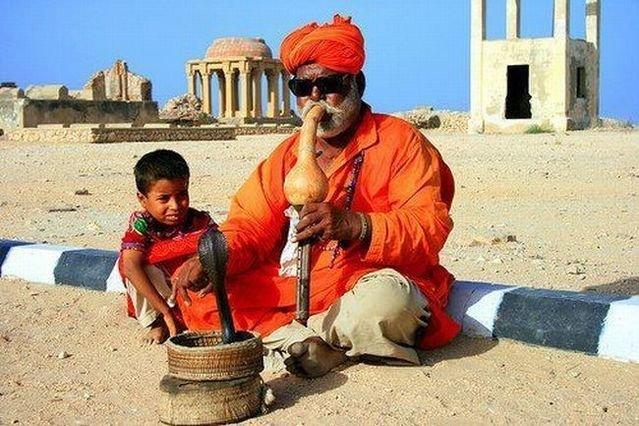 Индия (72 фото)
