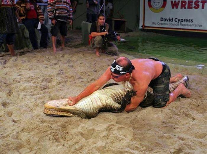 Шоу с крокодилами (15 фото)