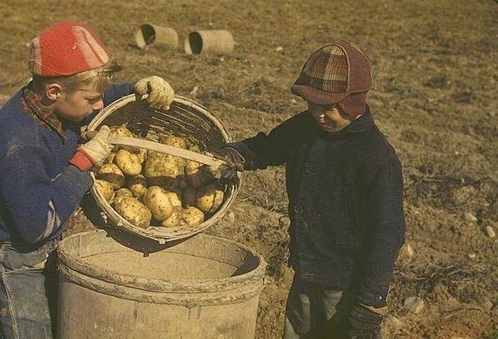 США в начале-середине 20-го века (61 фото)