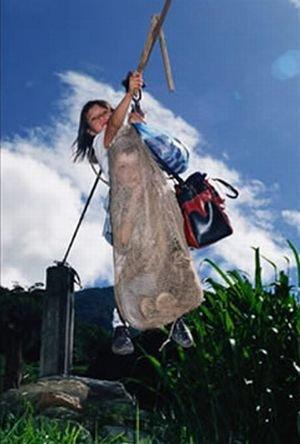 Самый необычный способ попасть в школу (8 фото)