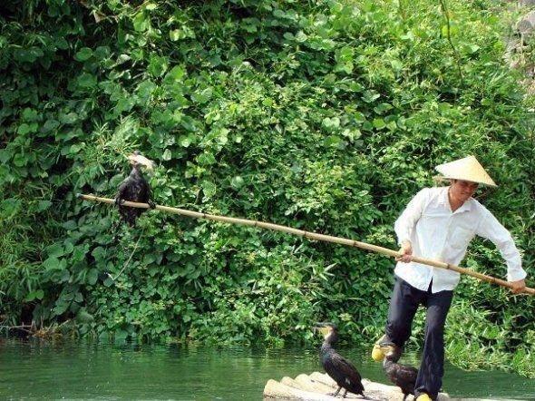 Необычный способ рыбной ловли (10 фото)