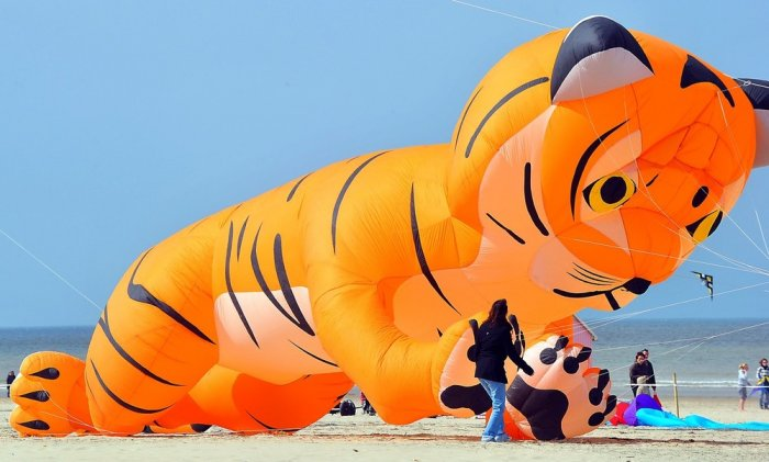 Фестиваль воздушных змеев во Франции (6 фото)