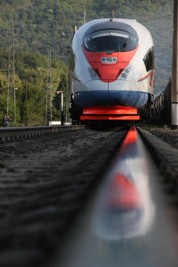Высокоскоростной поезд Сапсан (20 фото)