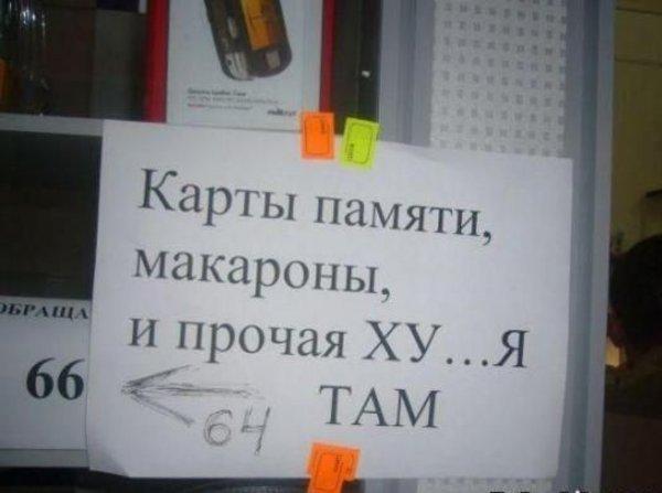 Загонные надписи (50 фото)