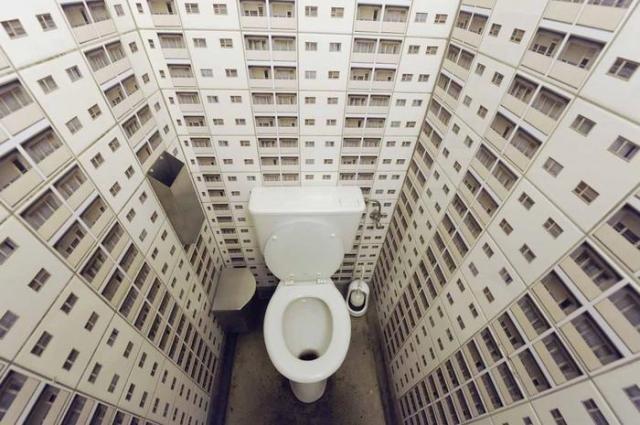 Разные туалеты (20 фото)
