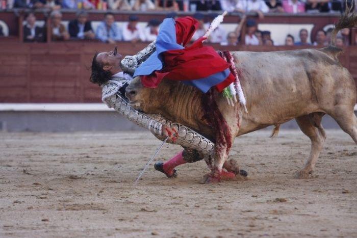 Бой с быком (5 фото)