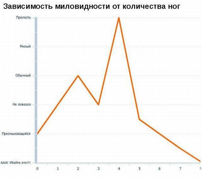 Загонные графики (19 фото)