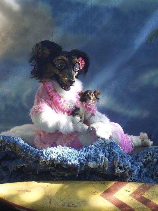 Костюм собаки (4 фото)