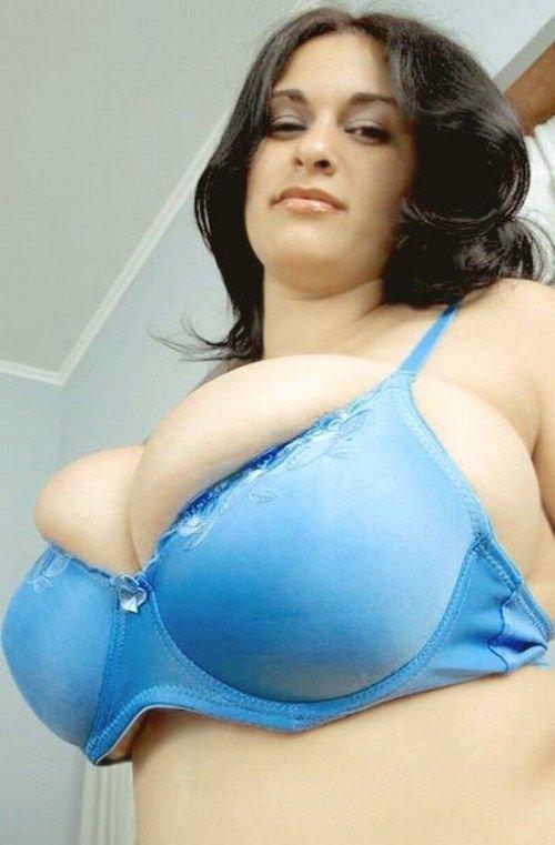 ����� ������� ����� (40 ����)