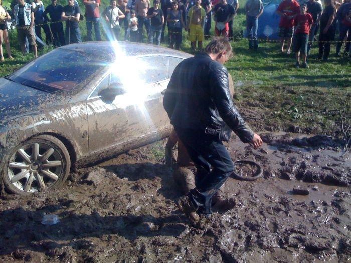 Купание в грязи (23 фото)