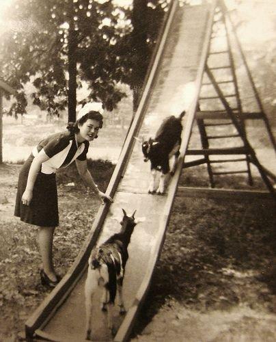 Загонные старые фотографии (52 фото)