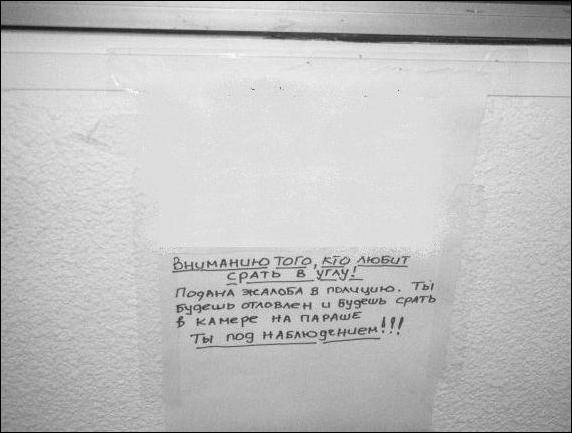 Загонные объявления (34 фото)