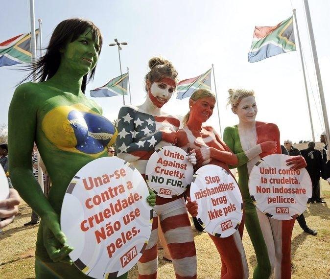 Протест против использования меха животных в ЮАР (11 фото)