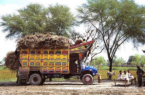 Прокачанные пакистанские тачки (9 фото)