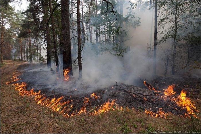 Пожары в России (45 фото + видео)