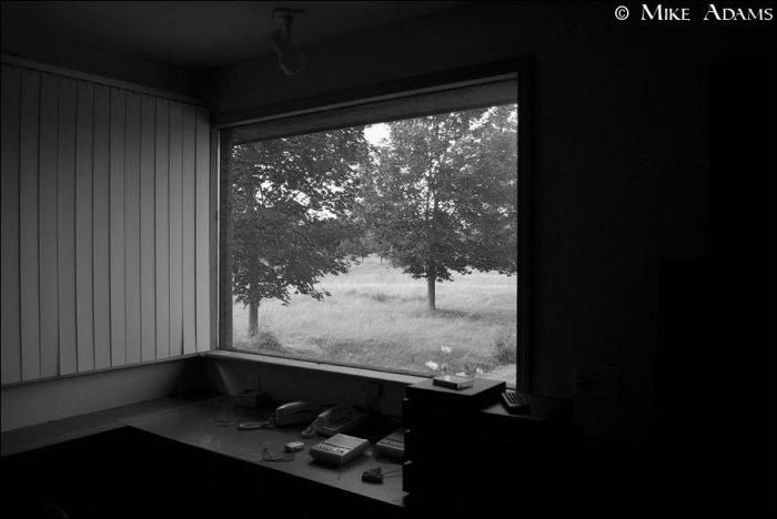 Дом, где жил Майк (38 фото)
