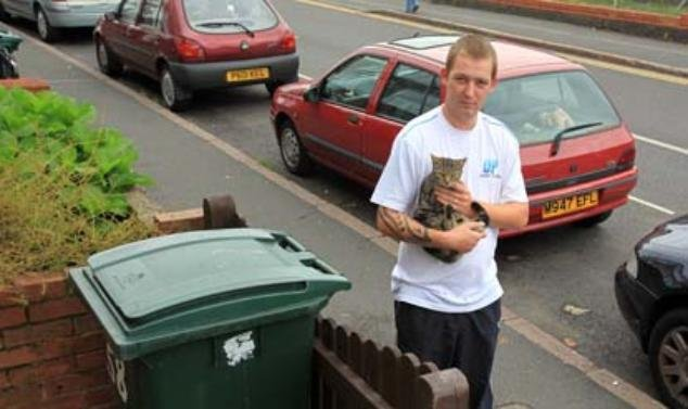 Бедный котик (6 фото)