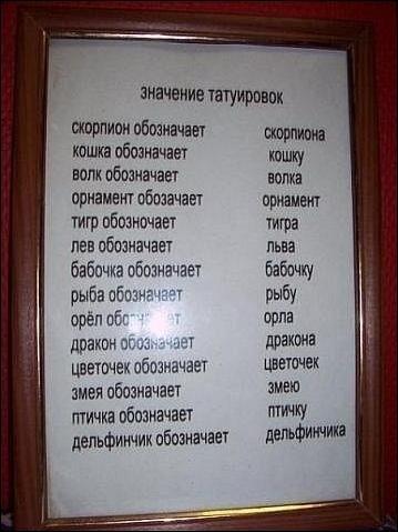 Загонные объявления и вывески (35 фото)