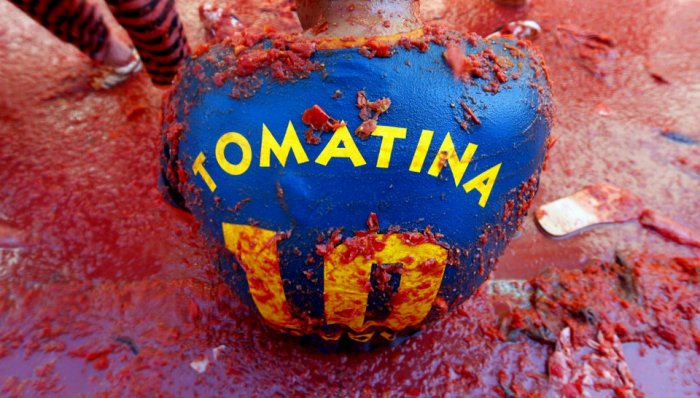 Томатина - красная война (20 фото + текст)