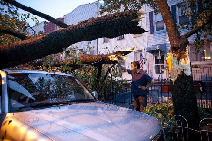 В Нью-Йорке прошел торнадо (17 фото)
