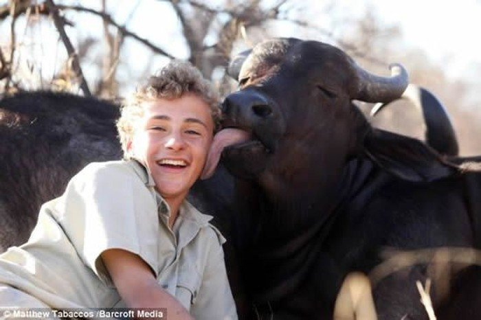 Дружба мальчика и быка (4 фото)