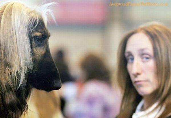Фотографии с животными (27 фото)