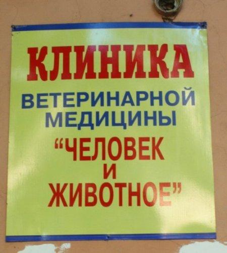 Загонные надписи и объявления (33 фото)