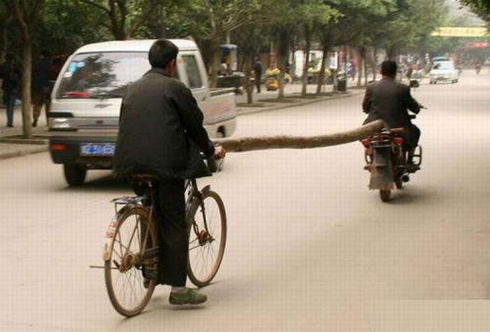 Нетрадиционные способы перевозки (25 фото)