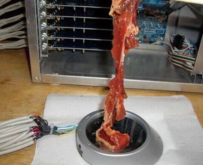 Жарка мяса через USB (6 фото)