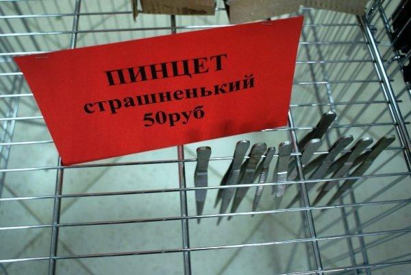 Загонные объявления и надписи (38 фото)