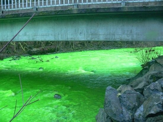 Зеленая река в Канаде (6 фото)