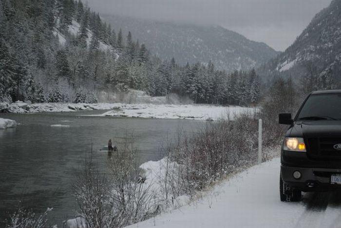 Случай в Канаде (7 фото)