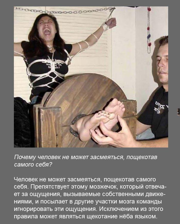 Интересные факты (34 фото)