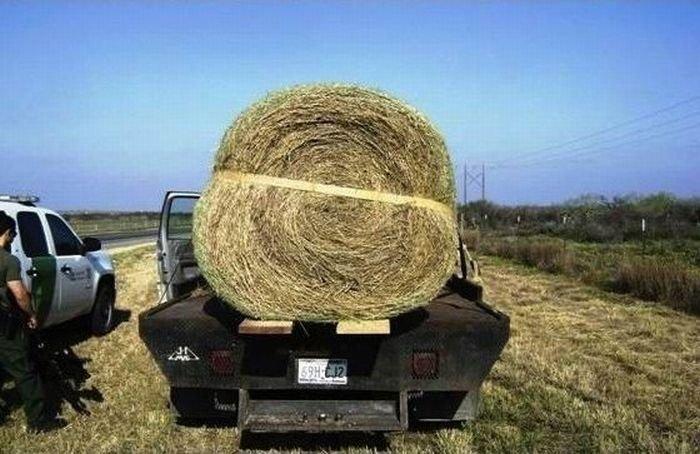Как выгодно продать стог сена (4 фото)