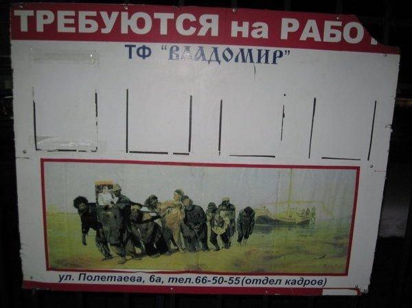 Загонные объявления и надписи (62 фото)
