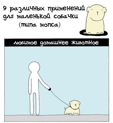Для чего нужны маленькие собачки (2 фото)