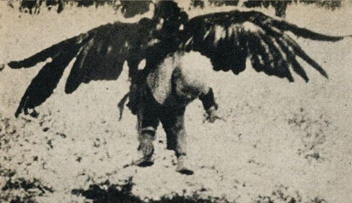 Орел утащил ребенка (3 фото)