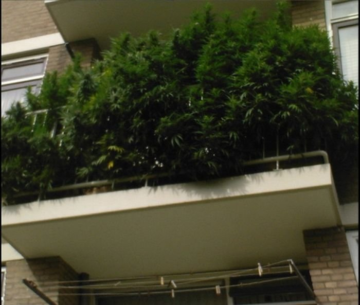 Необычный балкон (3 фото)
