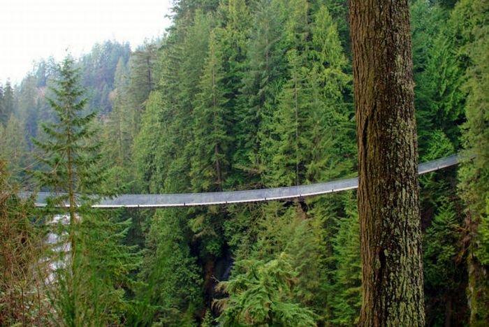 Очень длинный подвесной мост (22 фото)