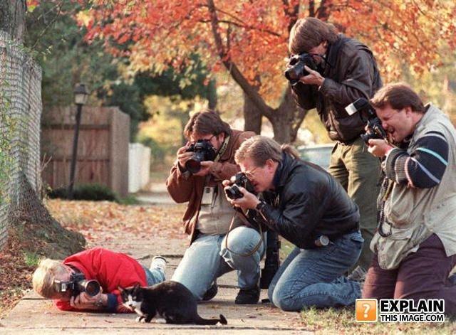Объясните эти фотографии (54 фото)
