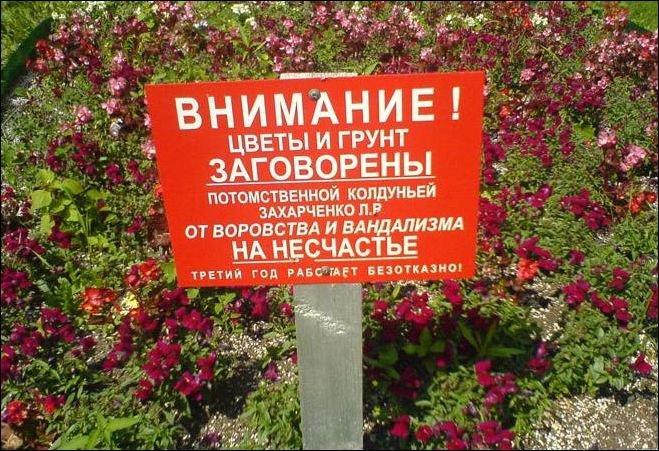Загонные объявления и надписи (26 фото)