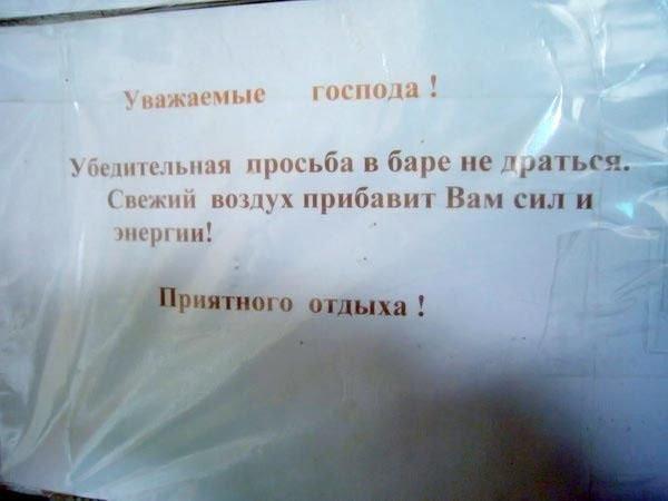 Загонные объявления и надписи (100 фото)