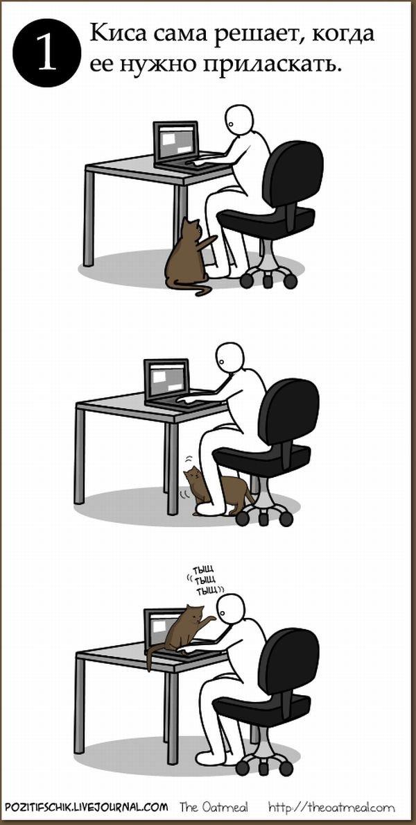 Как правильно ласкать киску (6 фото)