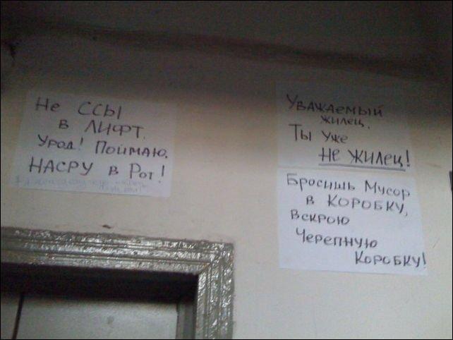 Загонные объявления и надписи (19 фото)