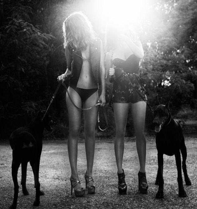 Фотографии красивых девушек. Часть 19 (115 фото)
