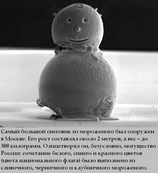 Факты о мороженом (25 фото)