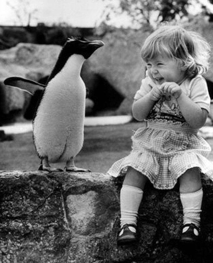 Дети и животные (17 фото)